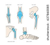 medical illustration of the...   Shutterstock .eps vector #637860085