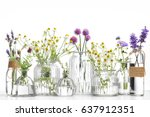 bottle of essential oil with... | Shutterstock . vector #637912351