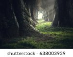 creepy mystic magic deep forest | Shutterstock . vector #638003929