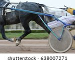 legs of a gray trotter horse... | Shutterstock . vector #638007271