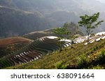 rice fields on terraced of mu... | Shutterstock . vector #638091664