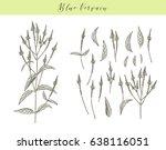 vector hand drawn medicinal ...   Shutterstock .eps vector #638116051