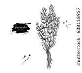 lavender vector drawing set.... | Shutterstock .eps vector #638118937