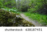 Mossy Rock With Nature Trail