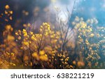Small photo of A poetic evanescent image of yellow flowers in a rape field
