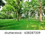 green trees in public park with ... | Shutterstock . vector #638287339