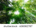 looking up at exotic lush green ... | Shutterstock . vector #638382787