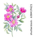 watercolor hand painted pink... | Shutterstock . vector #638419621