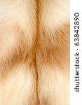 Nice Fur Fox Texture
