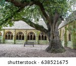 oxford  uk   may 2017  the tree ... | Shutterstock . vector #638521675