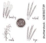 organic grain sketch... | Shutterstock . vector #638583739