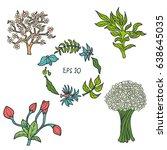 set of flowers hand drawn... | Shutterstock .eps vector #638645035