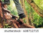 Climbers Jungle Green  Ideas T...