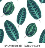 exotic seamless pattern with... | Shutterstock .eps vector #638794195