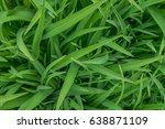 green leaves for background  | Shutterstock . vector #638871109