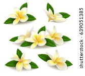 Several Realistic White Yellow...