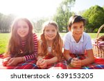 friends laying on the picnic... | Shutterstock . vector #639153205