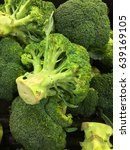 fresh broccoli in a pile on... | Shutterstock . vector #639169105