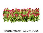 flower bush tree isolated with... | Shutterstock . vector #639210955