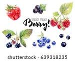 berries watercolor set... | Shutterstock . vector #639318235