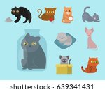 cute cats character different... | Shutterstock .eps vector #639341431