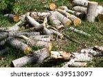 Logs Of Aspen.