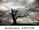 Silhouette of bare tree with cloudy sky - stock photo