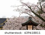 lamp with cherry blossom | Shutterstock . vector #639618811