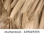 dry palm leaves background