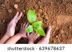 agriculture and planting in... | Shutterstock . vector #639678637