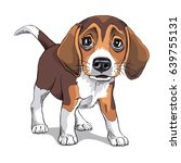 Stock vector portrait of a puppy beagle vector illustration 639755131