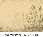 Corn Grass   Sketch