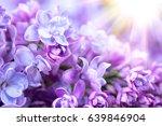 lilac flowers bunch violet art... | Shutterstock . vector #639846904