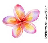 cute watercolor plumeria flower ... | Shutterstock . vector #639848671