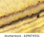 detail of a translucent slice... | Shutterstock . vector #639874531