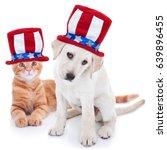 patriotic happy american pet... | Shutterstock . vector #639896455