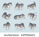 Stock vector alaskan malamute puppies dog breed vector illustration set 639960631