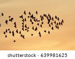 economic and efficient... | Shutterstock . vector #639981625
