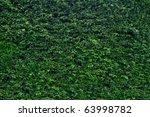 Thick Green Garden Hedge Pattern