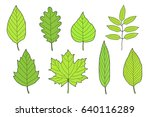 Hand Drawn Set Of Green Leaves...