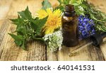 alternative medicine with plant ... | Shutterstock . vector #640141531