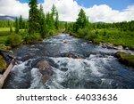 Wild mountain river flowing through the fir forest