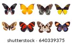 set of beautiful and colorful...   Shutterstock . vector #640339375