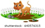 Cute Cat Standing In Garden...