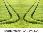 parting  or two different ways. ... | Shutterstock . vector #640598164
