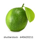 lime isolated on white...   Shutterstock . vector #640620211