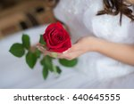one beautiful bright red rose... | Shutterstock . vector #640645555