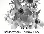 bouquet of spring flowers in... | Shutterstock . vector #640674427