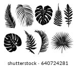 tropical leaves collection set. ... | Shutterstock .eps vector #640724281