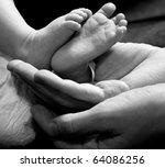 Tiny Legs Of The Newborn In...